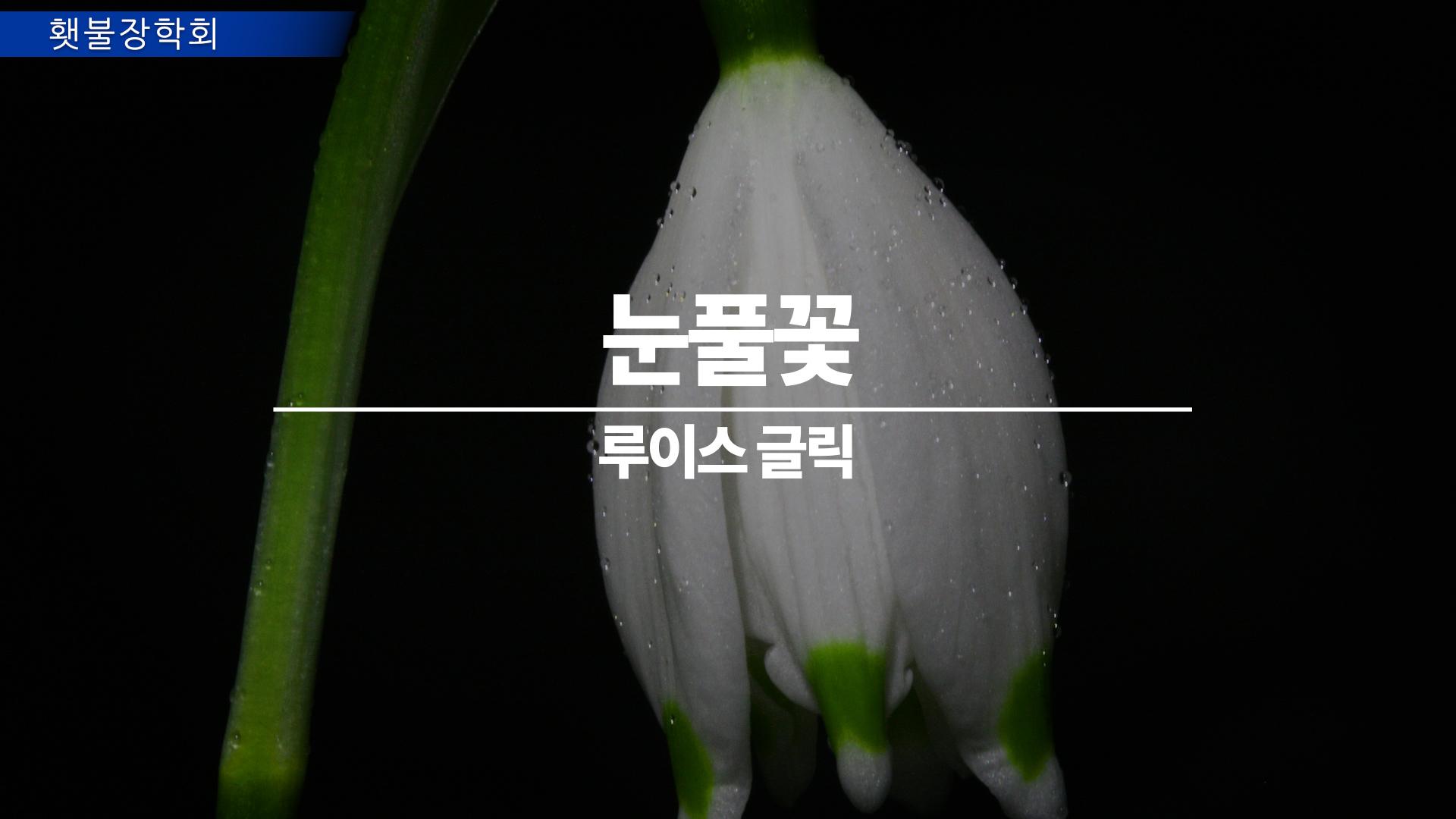 210101_횃불_title.jpg