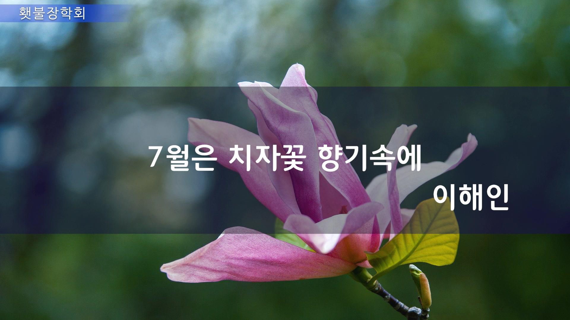 200701_7월편지_title.jpg